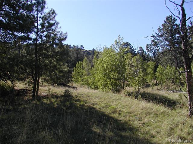 653 Lakeview Heights, Florissant, CO 80816