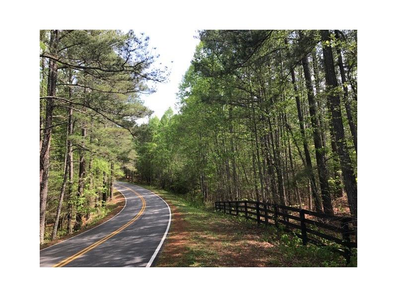 231 SE Wilderness Camp Road, White, GA 30184