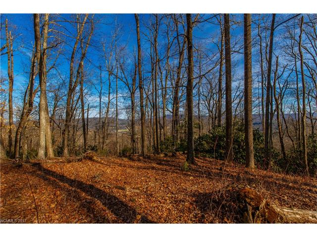 20 Hawkins Hollow Road 20, Pisgah Forest, NC 28768