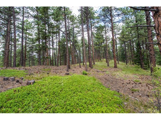 0000 Ruby Ranch Road, Evergreen, CO 80439