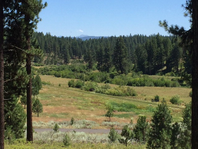 Lot # 15 Pine Meadows Court, New Meadows, ID 83654