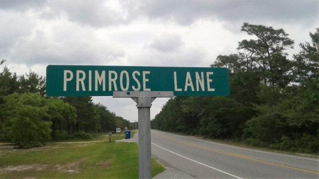2155 Primrose Lane, Gulf Shores, AL 36542