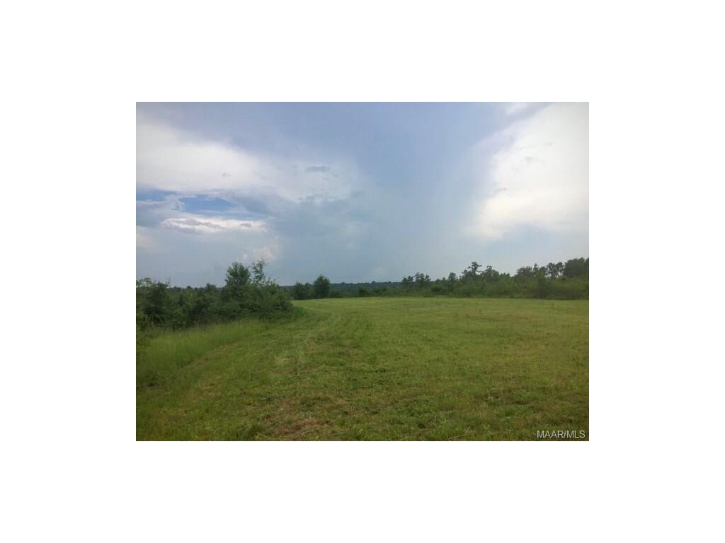 1408 County Road 446 ., Marbury, AL 36051