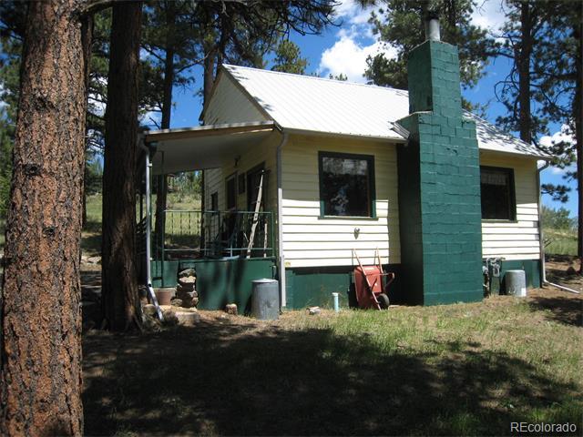 117 S Pine Drive, Bailey, CO 80421