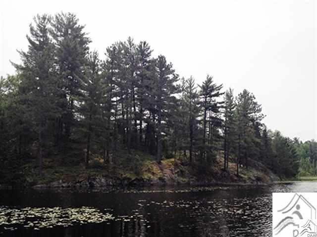 xxx Twin Lake, Ely, MN 55731
