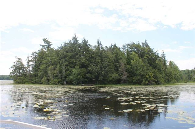 1262 Island #126, Kawartha Lakes, ON K0M 1A0
