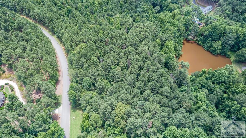 Wild Azalea Lane, Athens, GA 30606