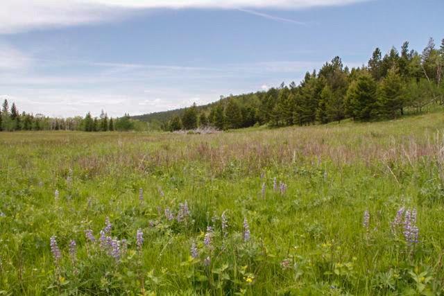 TBD Elk Meadows, Judith Gap, MT 59453