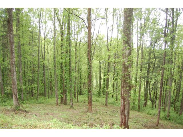 Dream home needed for this lovely private homesite located in Hydewell Estates. Long range Views. Small subdivision well located within minutes to I-26, shopping and dining. Possible access from lower portion of lot. Owner financing with acceptable terms.