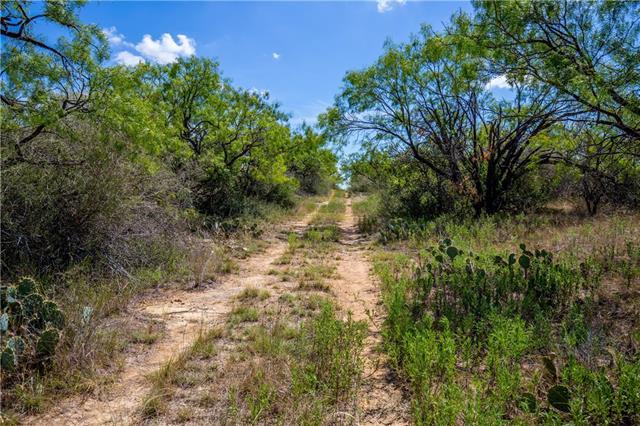 TBD CR 236, Richland Springs, TX 76871