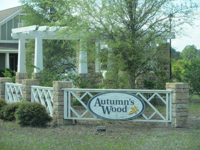 Autumns Wood Subdivision, Brunswick, GA 31525