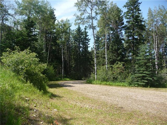 #3, Lot 1 Cranberry Drive, Rural Clearwater County, AB T0M 0M0