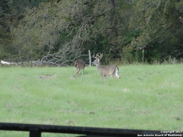 9980 County Road 324, Caldwell, TX 77836
