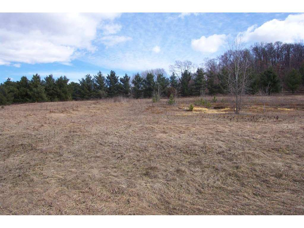 Lot 1 865th Street, Elk Mound, WI 54739