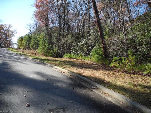 532 Camptown Road M113, Brevard, NC 28712