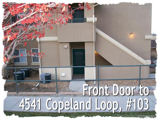 4541 Copeland Loop 103, Highlands Ranch, CO 80126