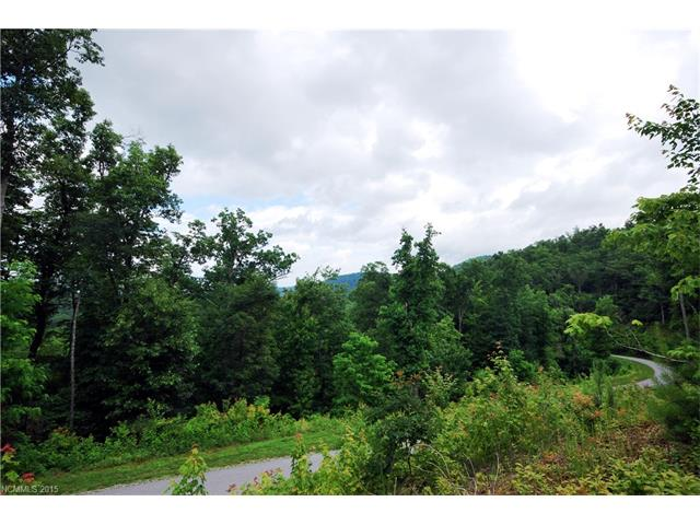 19 Kelly Mountain Road 19, Brevard, NC 28712
