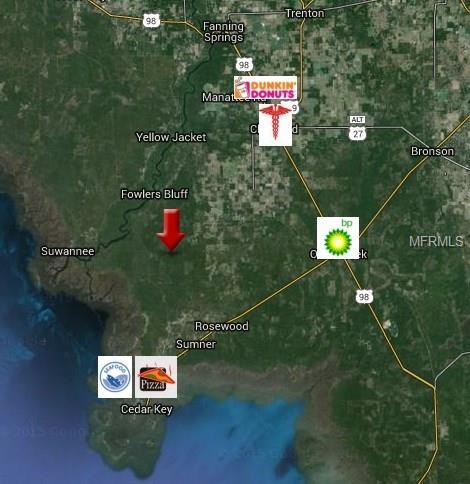 TIGER ISLAND, SUWANNEE, FL 32692