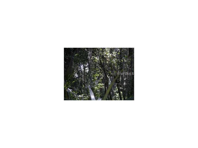 12450 KELSO RD, THONOTOSASSA, FL 33592