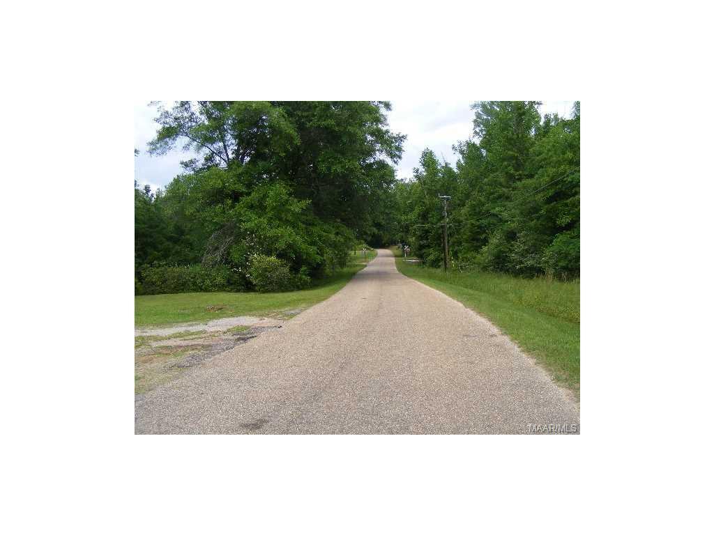 BEASLEY BRIDGE Road, Georgiana, AL 36033