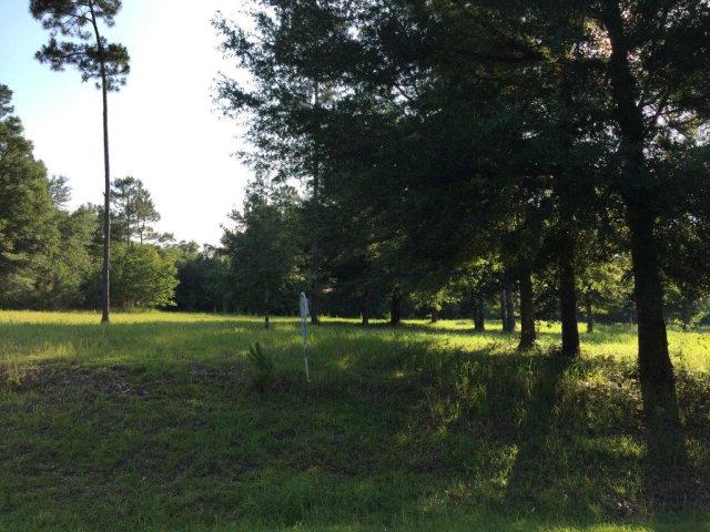 Pandion Drive, Magnolia Springs, AL 36555