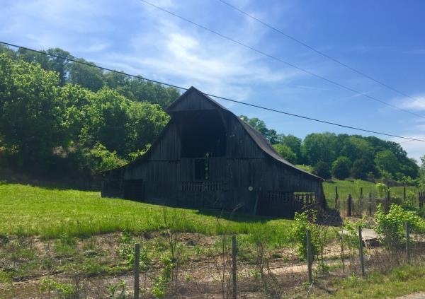 500 Hollis Creek South, Woodbury, TN 37190