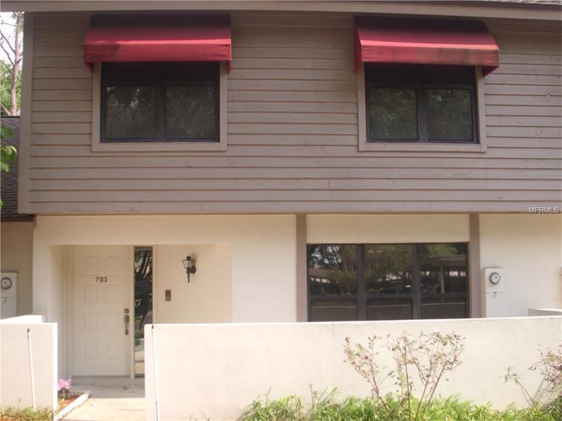 703 OAK PARK PLACE, BRANDON, FL 33511