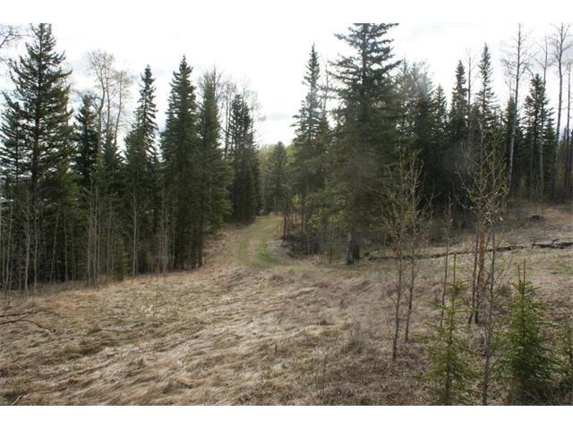 41 James River Crossing, Rural Clearwater County, AB T0M 0M0