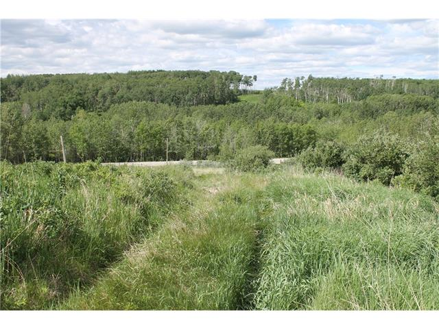 290 TWP, Rural Mountain View County, AB T0M 1L0
