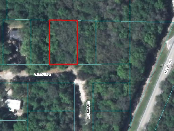 NE 227TH PLACE, SALT SPRINGS, FL 32134