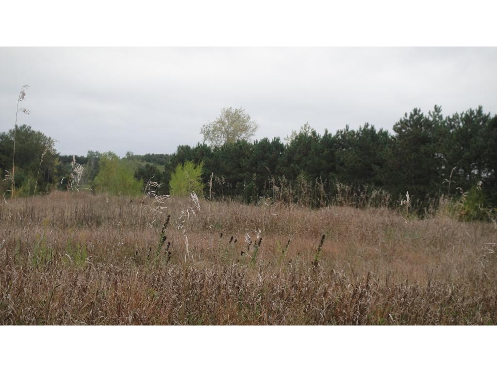 234xxx Elmcrest Ave, Forest Lake, MN 55025