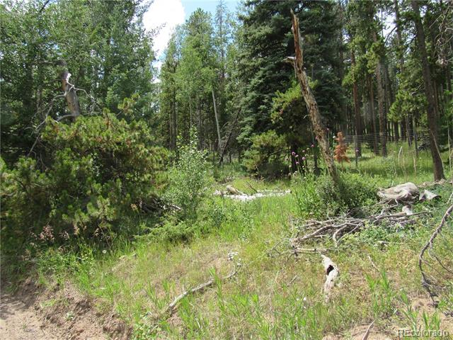 6891 Brook Forest Drive, Evergreen, CO 80433