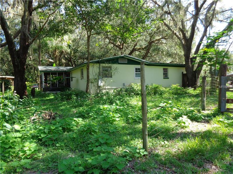 3633 PANTHER PATH ROAD, LUTZ, FL 33559