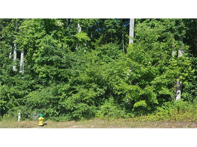 PRICE JUST REDUCED!! One of the Largest Lots in the desirable neighborhood of Trillium Glen. Ready to have your dream home built on it. Hurry and take advantage of this rare opportunity. Lots in this neighborhood don't come available very often, especially one of this size.