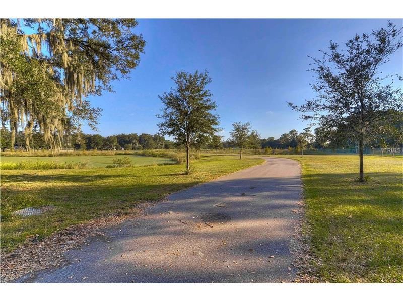 3604 LITTLE STEARNS ROAD, VALRICO, FL 33596