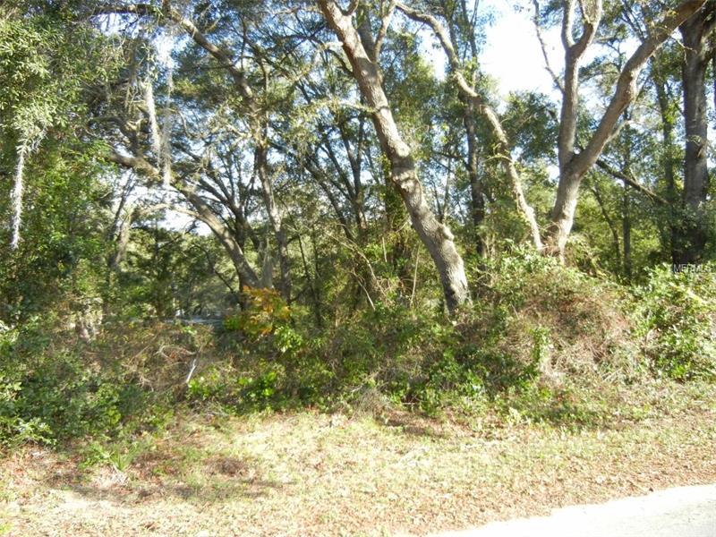 MAGNOLIA ROAD, ALTOONA, FL 32702