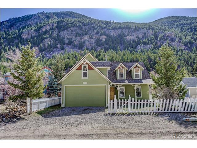 1438 Marion Street, Georgetown, CO 80444