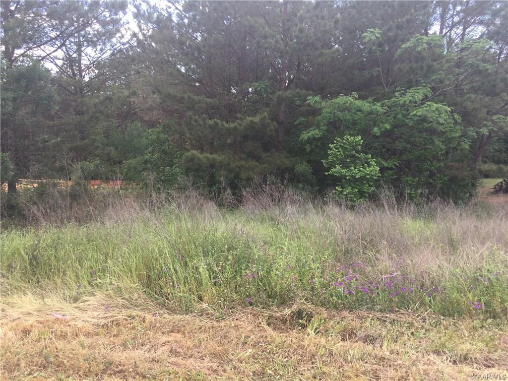 Meadows Lane, Troy, AL 36081