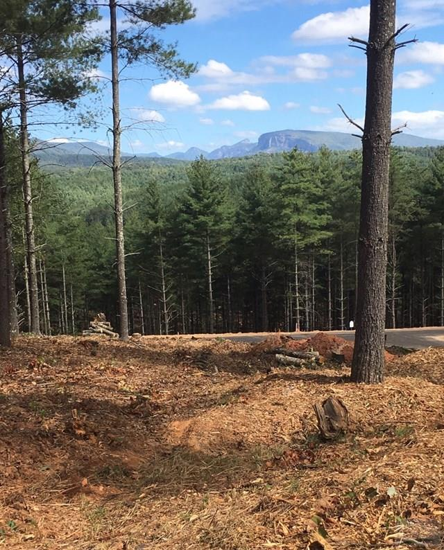 33 Gray Ridge View DR, Nebo, NC 28761
