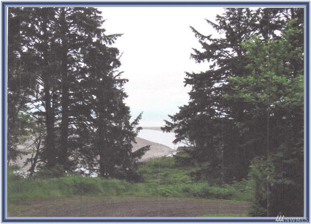 2500 Ocean View Lane, Copalis Beach, WA 98535