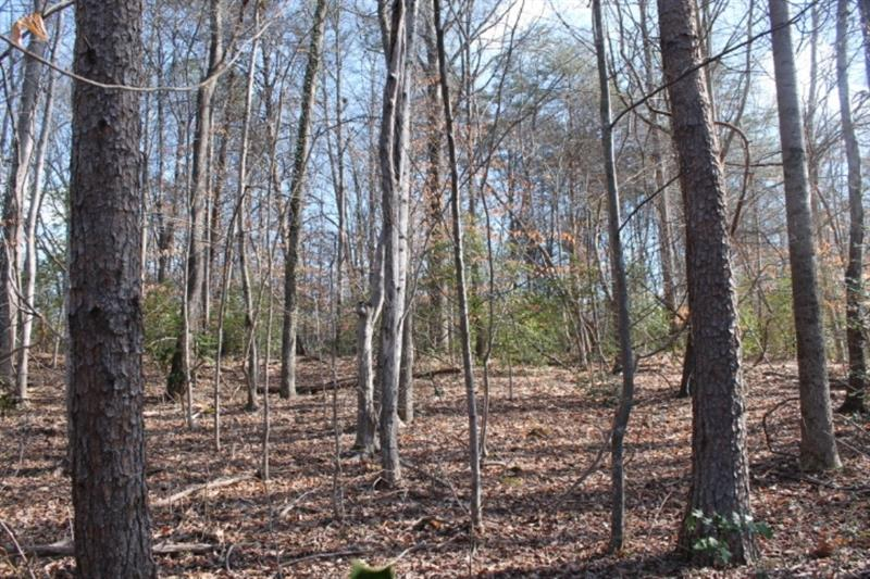 Build right at Chattahoochee Country Club without the city taxes. A wonderful flat lot to build your dream home. Wonderful homes on this street, but you are not tied down by covenants.