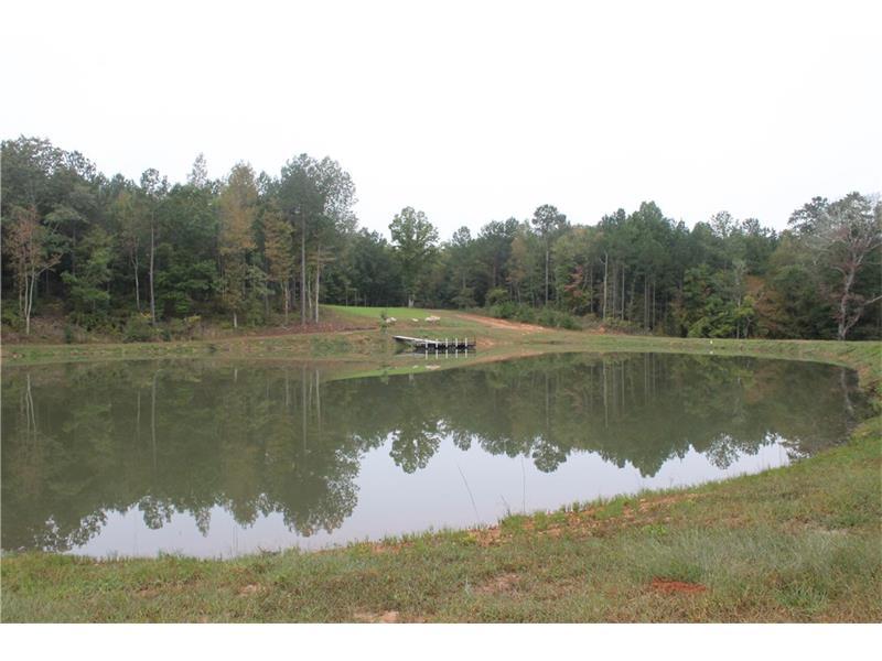 2000 Lick Skillet Road, Greensboro, GA 30642
