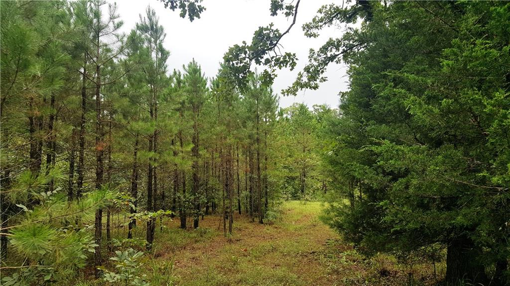 80ac-logging trail access, Leflore, OK 74942