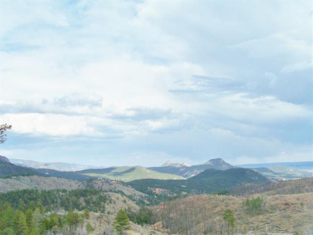 14704 WETTERHORN PEAK Trail, Pine, CO 80470