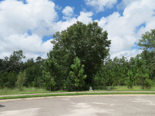 Lakeview Drive, Gulf Shores, AL 36542