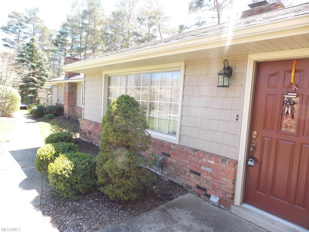 10294 Page Dr, Concord, OH 44060