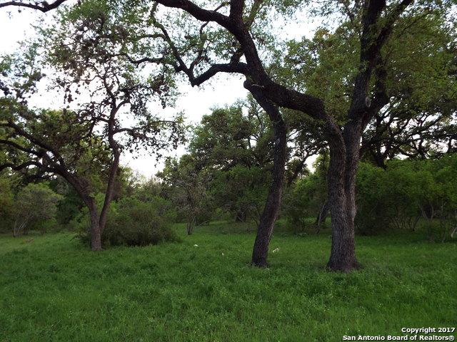 20617 WAHL LN, Garden Ridge, TX 78266