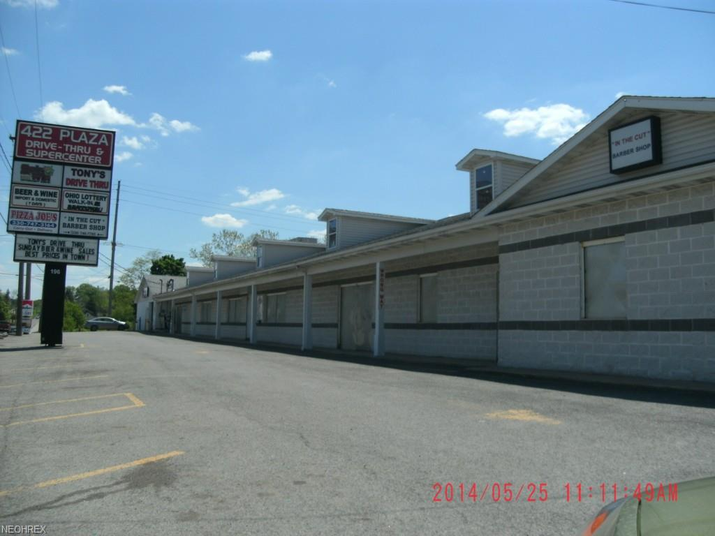 196 Mccartney Rd, Youngstown, OH 44502
