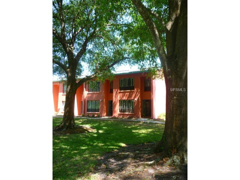 1781 SAMURAI POINT P10, LUTZ, FL 33558