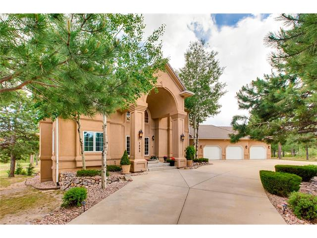 1355 Embassy Court, Monument, CO 80132
